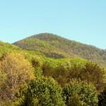 Sassafras Mountain